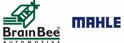 Stärkung der Diagnosekompetenz: Mahle steigt bei Brain Bee ein