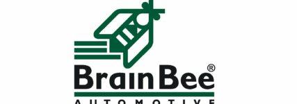 Neuer Geschäftsführer bei Brain Bee