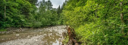 R1234yf: Auch für das Grundwasser gefährlich?