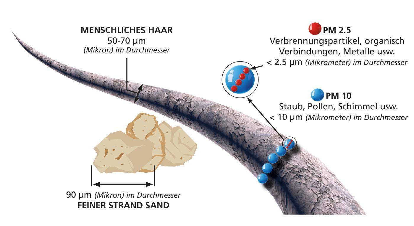 Größenvergleich verschiedener Partikel mit einem menschlichen Haar